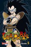 Dragon Ball Massiv 05