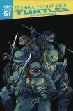 Teenage Mutant Ninja Turtles (2020) TPB 01 (24): From the Ashes
