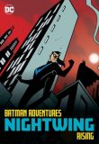 Batman Adventures (1998) Graphic Novel: Nightwing - Rising