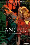 Angel - Jäger der Finsternis 01: Mensch sein