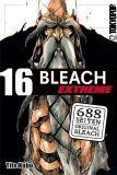Bleach Extreme 16
