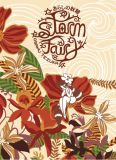 Storm Fairy (2021) Graphic Novel